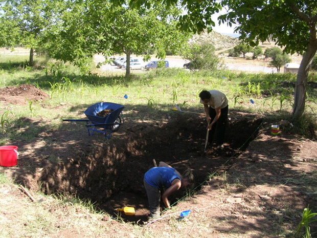 Fig. 5: Allisa Stoimenoff and Thanassis Christeas at work in the walnut grove (Trench F).
